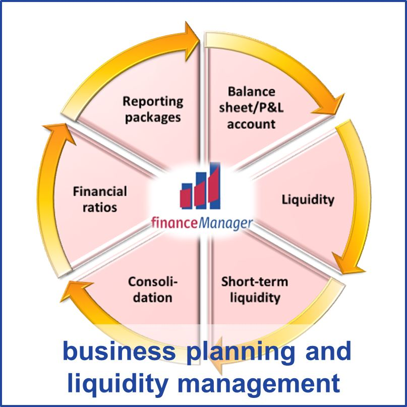 Financial Liquidity: Business Planning And Liquidity Management