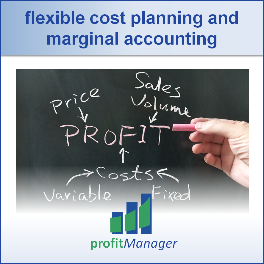 flexible cost planning and marginal accounting
